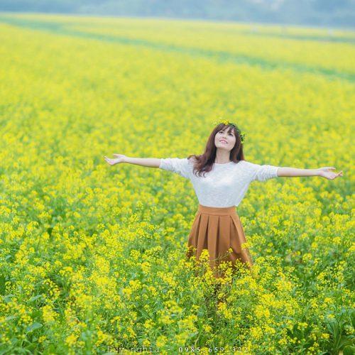Hướng dẫn đi cánh đồng hoa cải vàng Đà Lạt