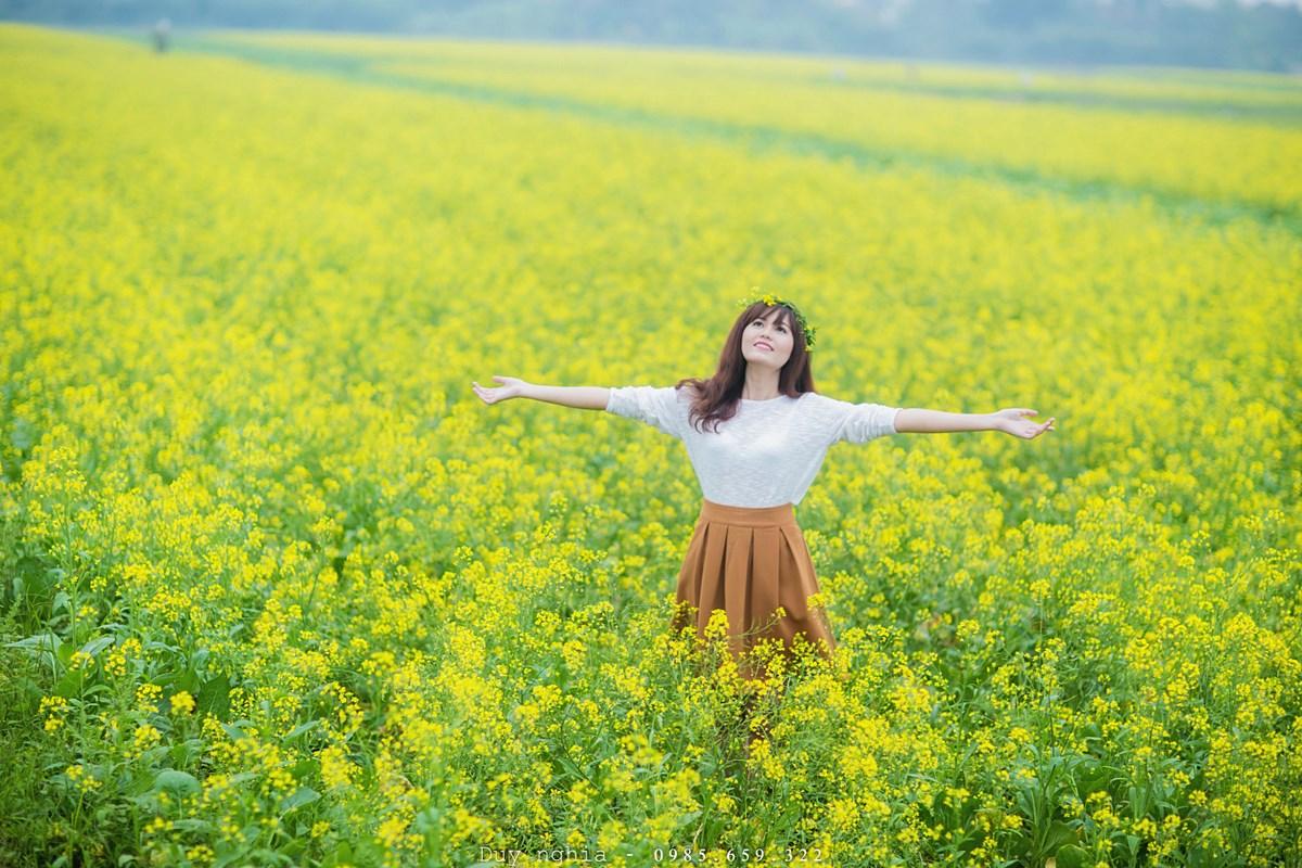 Mùa hoa cải vàng Đà Lạt sắp đến